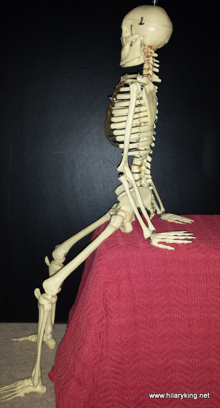 Sitting Skelly 03-01-2015.jpg